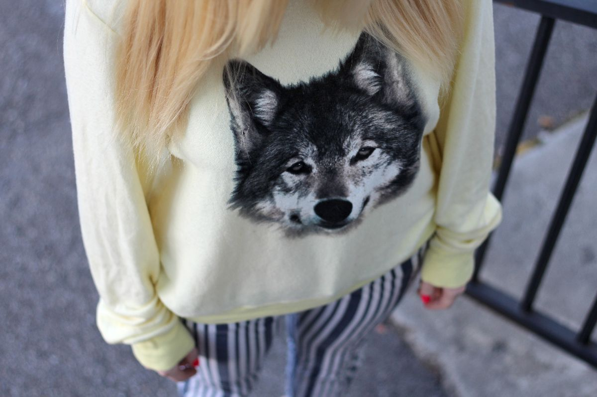 Wildfox, fox sweatshirt, currently crushing