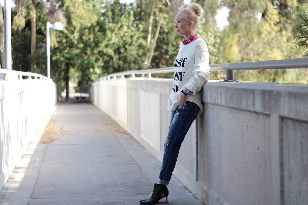 wildfox zooby zooby zoo sweater, zara jeans, dior booties, plaid shirt