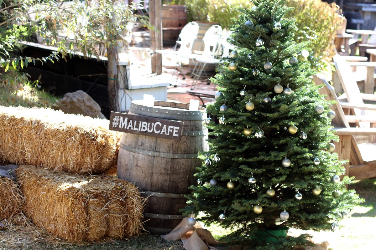 malibu cafe, calamigos ranch, currently crushing