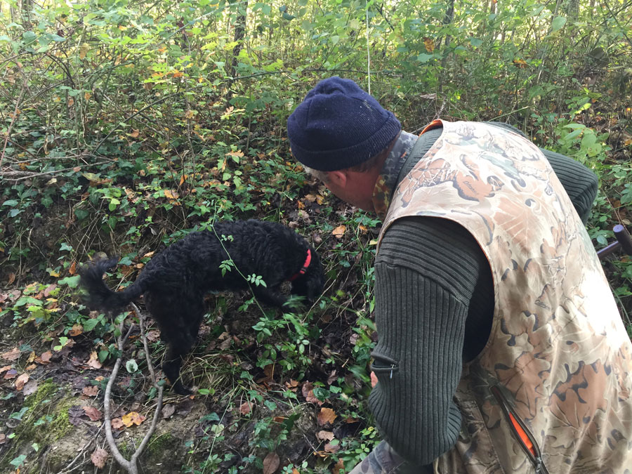 currently crushing, truffle hunting in tuscany, luxury travel